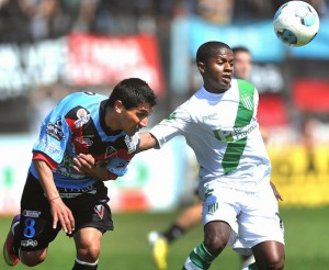 banfield vs brown